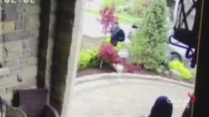 Police investigating after attempted break-in of Vaughan home caught on camera