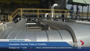 BIV: Canadian stocks take a tumble