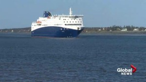 Nova Star Cruises says it will take 3 years before it's financially viable