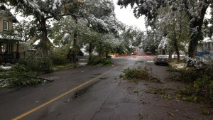 Calgary's summer snowfall breaks branches, downs power lines