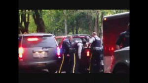 Raw: Police pursuit in Fort Langley ends with arrest