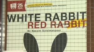 White Rabbit, Red Rabbit offers unique theatre experience