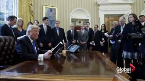 How effective are all the executive orders signed by President Trump?