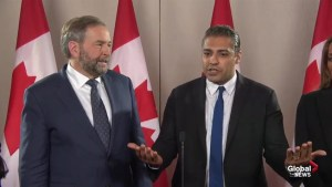 Mohamed Fahmy: Canada's image tarnished in middle east
