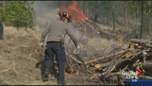 West Kelowna wants more money from province for wildfire prevention