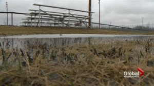 City of Moncton closes sports fields until further notice