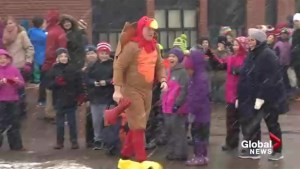 N.B. principal dresses up as turkey to teach students about holiday giving