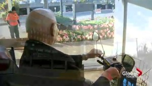 Veterans wake up to a field of flags at Sunnybrook