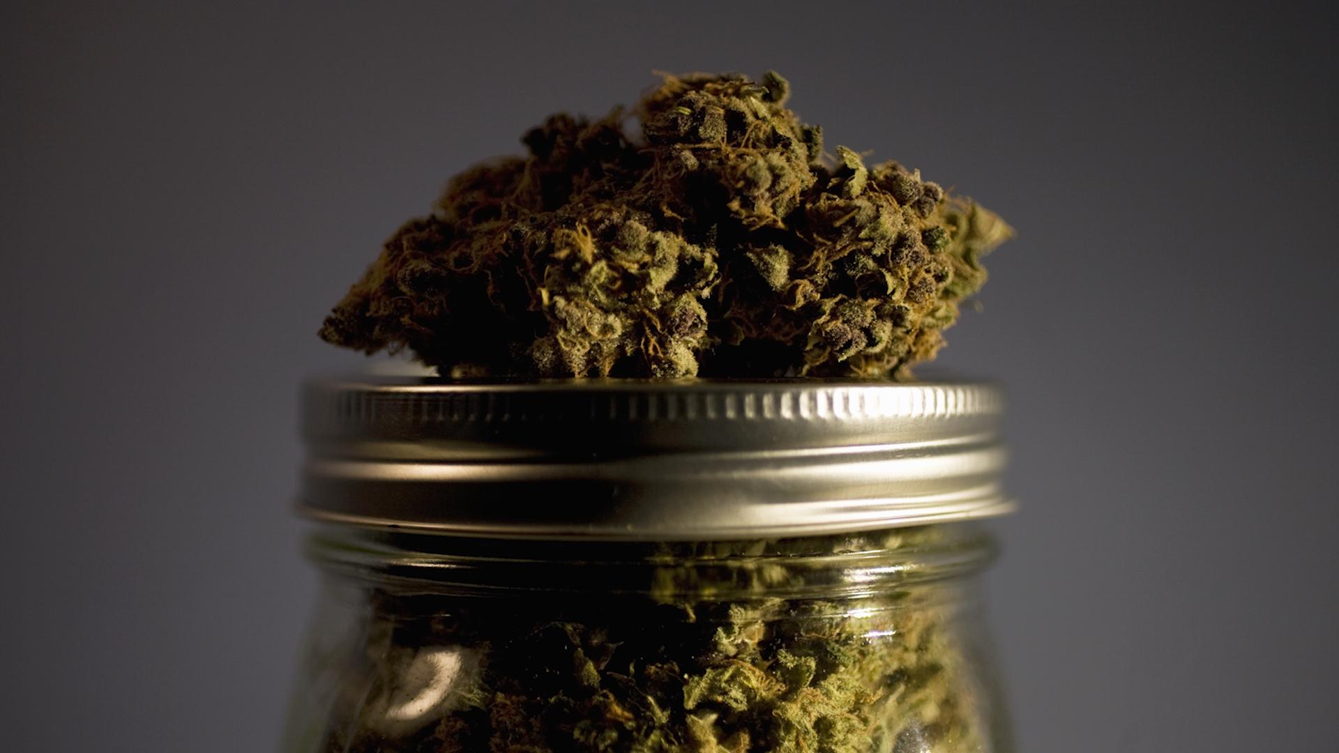 Canada introduces bill to legalize marijuana