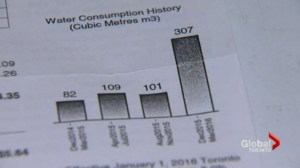 Water bill triples, city blames toilet