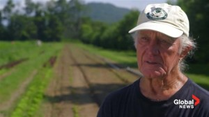 GMO Labelling: Organic farmer proud of fight for GMO labelling