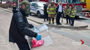 Police investigate suspicious packages sent to Canadian courthouses