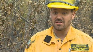 "Crews now in ""mop-up"" phase in wildfire battle near Bayers Lake"
