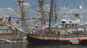 Prepare for tips if you're heading to this weekend's Tall Ships Regatta in Halifax