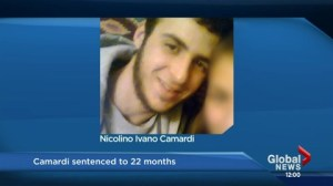 Nicolino Camardi Sentence for torturing dog and cat