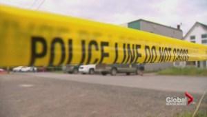 RCMP investigation wraps up in Campbellton python case