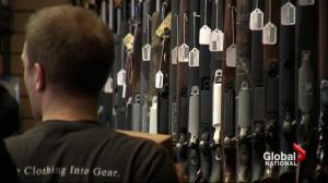 Reality check: Harper says NDP, Liberals would bring back long gun registry