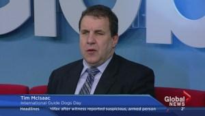 International Guide Dog day on Global News Morning