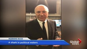 Kevin O'Leary enters Conservative leadership race