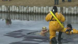 Dozens of brave souls take the polar dip in Lethbridge