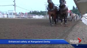 Calgary Stampede enhances chuckwagon safety measures