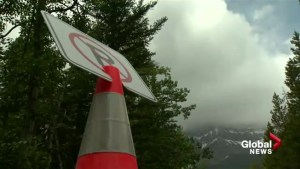 Parking bans in effect this summer for Banff National Park