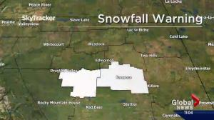 Snowfall warning issued for areas south of Alberta's capital