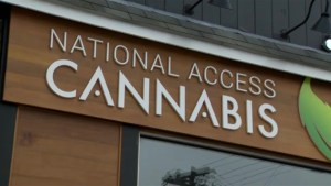 Halifax cannabis clinic offers `legal` options to patients