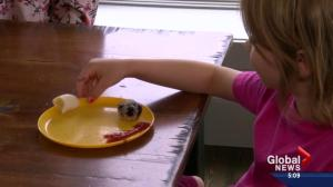 Edmonton family matters: How to deal with picky eaters