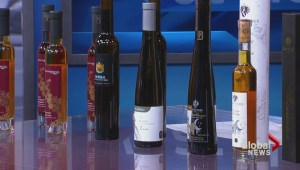 Ontario ice wines for every course of your meal