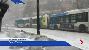 Montreal STM buses help each other up hill
