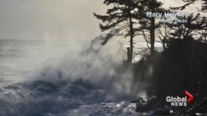 BC Evening Weather Forecast: Nov 14