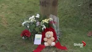 Dario Bartoli murder: IHIT needs witnesses