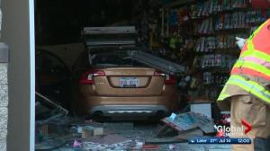 Car crashes into Edmonton pet store