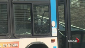 Bus driver faces charges