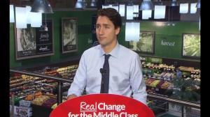Liberal government would introduce middle-class tax cut in first bill