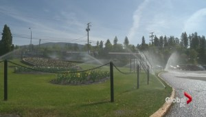 How far will watering restrictions go?