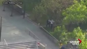 Video shows skateboarder allegedly assault security guard