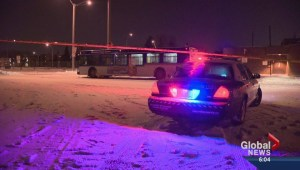 Edmonton's Crime Severity Index