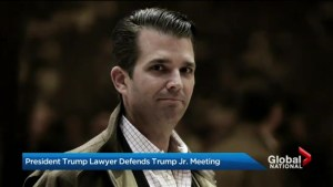 Questions about Trump's knowledge of son's meeting with Russian lawyer