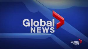 Global News at 6: August 13