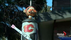 Flames fan hopes Lanny McDonald bird feeder brings team luck