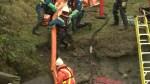 Pipeline Reaction: Councillor Adriane Carr