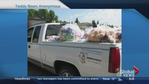 Teddy Bears Anonymous for sick kids
