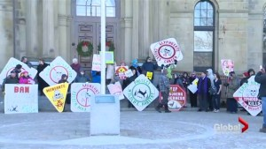 Protesters demonstrate glyphosate use in New Brunswick