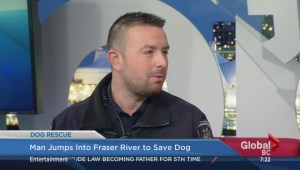 Man  jumps into Fraser River to save dog