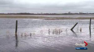 Wet weather leaves Alberta farmers desperate for help