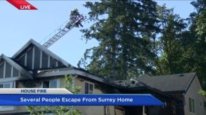 Residents and pets escape house fire in Surrey