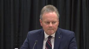 Poloz stand by assessment that Canada's oil-based economy must 'work itself out'