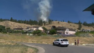 Knox Mountain brush fire in Kelowna was arson